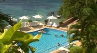 牙买加:我们只想温柔地对待你