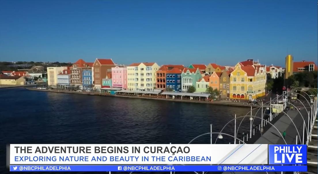 开启库拉索探险之旅,发现加勒比海岛的自然与美